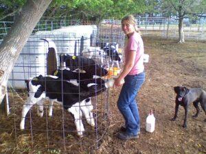 JJ-Livestock-Fall-2008